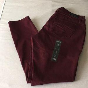 Maroon  slim fit skinny pant
